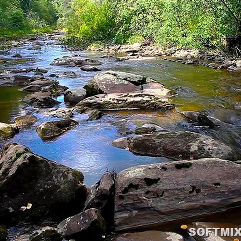 Российские реки, где можно намыть золото