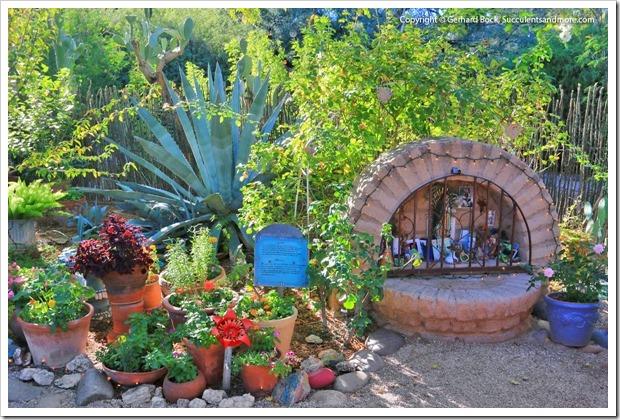 131203_TucsonBotanicalGarden_156