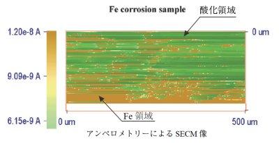 Fe corrosion sample