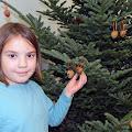 Holiday Tree Decorating