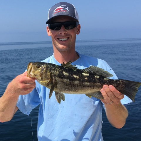 California Fishing Blog Santa Barbara Calico Bass Fishing