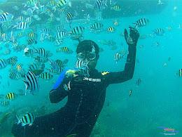 pulau harapan, 6-7 juni 2015 samsung gopro be 28