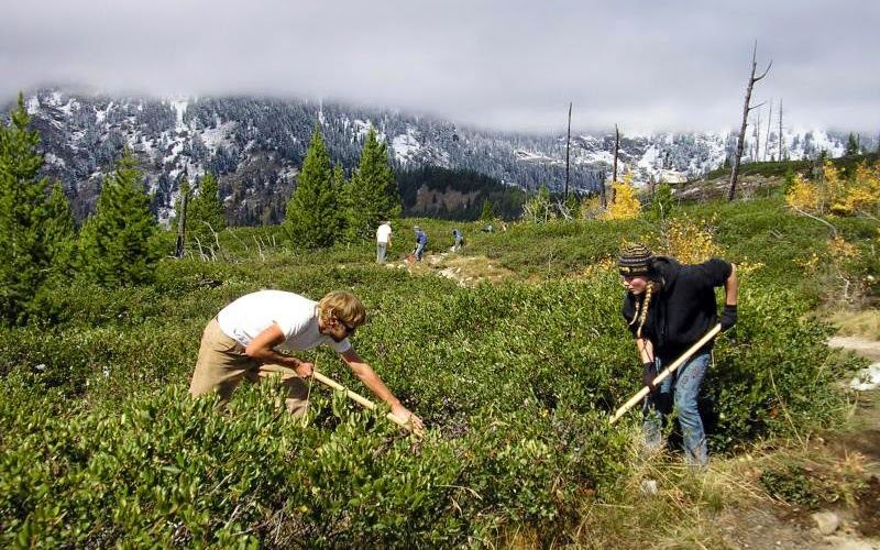 Volunteers working at the Grand Teton National Park, WY, a DOI/VISTA project site.