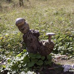 Wanderung Labyrinth 17.08.16-6811.jpg