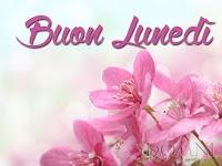 buon lunedi immagine con frase aforismo fiori rosa.jpg