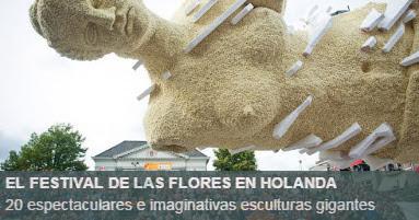 Cabalgata flores Holanda