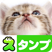 Cat Stickers Free