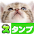 Cat Stickers Free file APK for Gaming PC/PS3/PS4 Smart TV