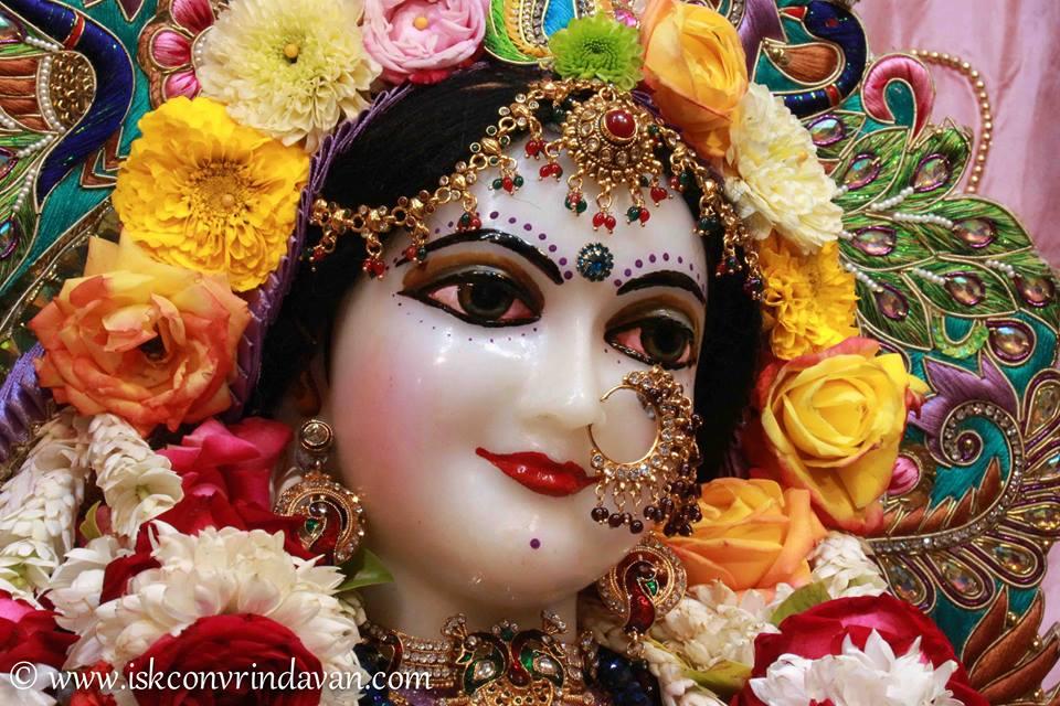 ISKCON Vrindavan Sringar Deity Darshan 15 Jan 2016  (15)