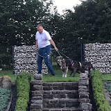 Pepper i Benji u novom domu - 20134697_1737391999608807_15614709_n.jpg