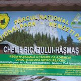 2009-03-15 hasmas