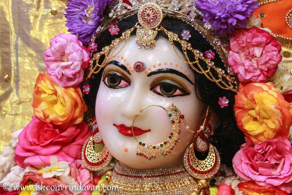 ISKCON Vrindavan Sringar Deity Darshan 12 Mar 2016 (14)