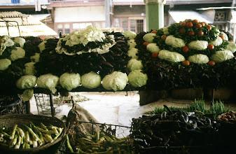 Photo: 11030 上海/食料品店/キャベツ/ナス/トマト