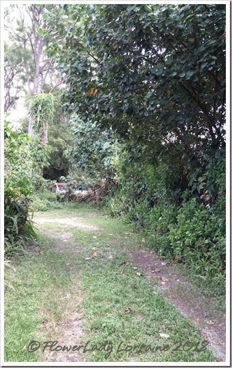 08-23-driveway2