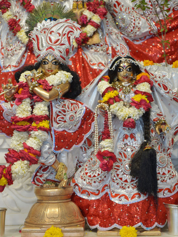 ISKCON Ahmedabad Deity Darshan 23 April 2016 (7)