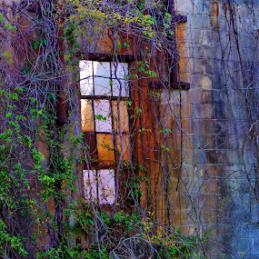 A Window Tale by Angelika Sauer - Buildings & Architecture Other Exteriors ( walls, window, colors, glass, architecture, rust, romance, dusk, light, window glass architecture wall antiques romance dusk, antiques )