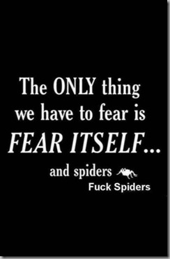 fear and spiders2