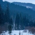 20170103_Carpathians_123.jpg