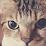 hinata yoci's profile photo