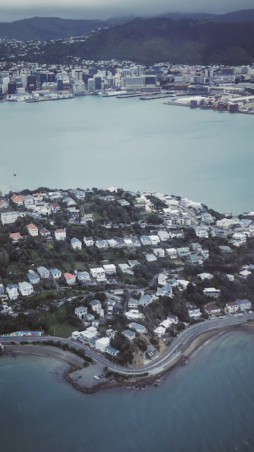 View of Roseneath and Wellington City (NZ) from airplane, circa 2016