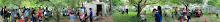 stitched_garden2 panorama