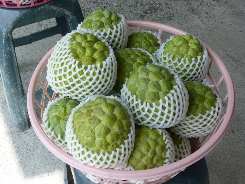 custard apple en francais anone?