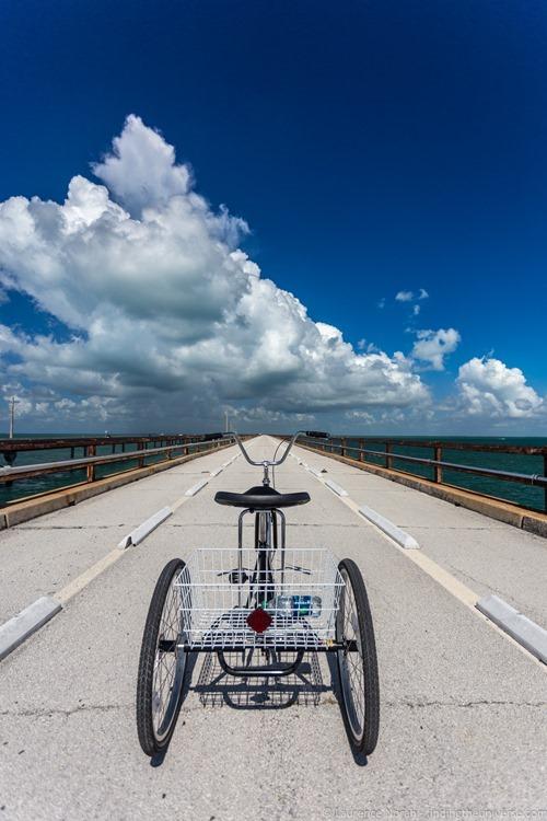 Tricycle seven mile bridge florida keys