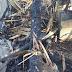 Fuego destruye la residencia de Ricardo Montaner en Samaná