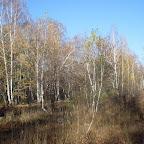 Озеро Круглое Подгоренский район 001.jpg