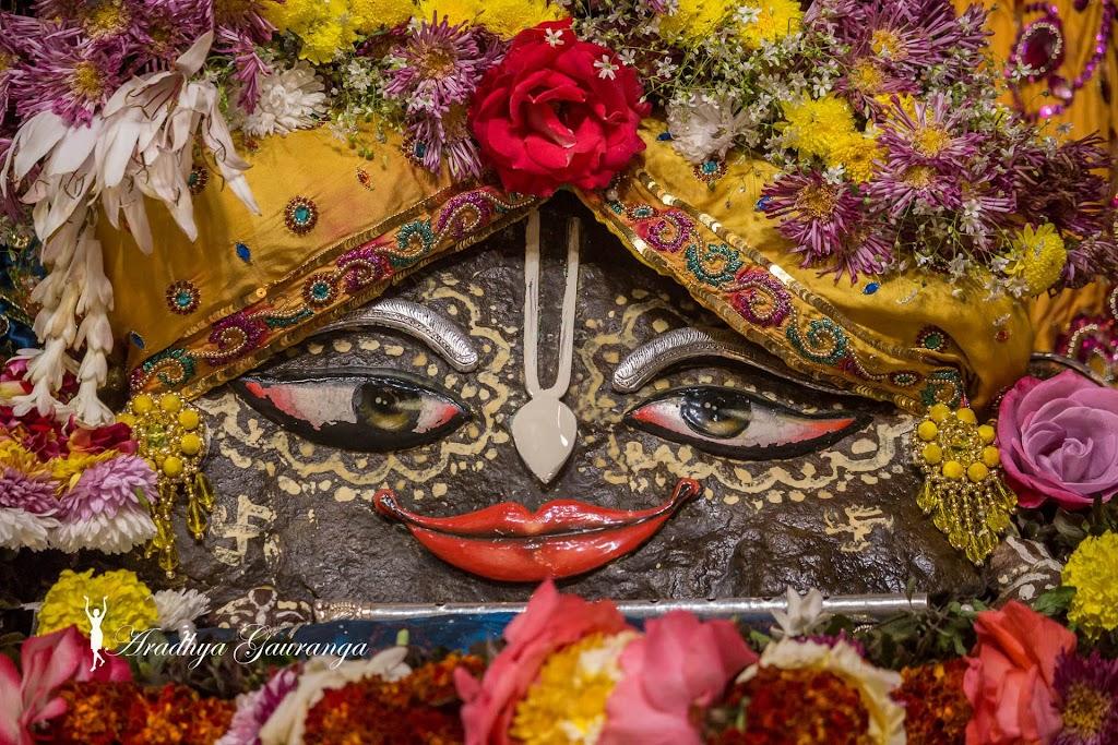ISKCON Mayapur Deity Darshan 18 Jan 2017 (27)