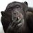 kljoki kljoki avatar image