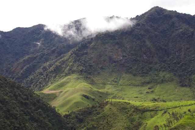 Les Andes entre El Limonal et la Merced de Buenos Aires, 2000 m (Imbabura, Équateur), 24 novembre 2013. Photo : J.-M. Gayman