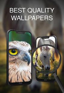 Animals Wallpapers for PC-Windows 7,8,10 and Mac apk screenshot 4