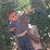 omar mamoune's profile photo