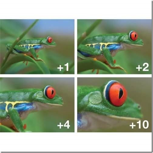 close up filter photography trick