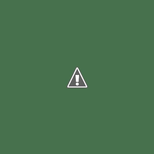 Intj and istj relationship