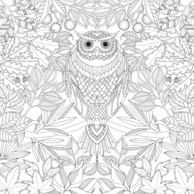 Jardin Secret Carnet De Coloriage Et Chasse Au Tresor Anti Stress Johanna  Basford  Amazon  Books