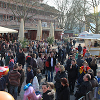 Umzug 2011 - Samstag