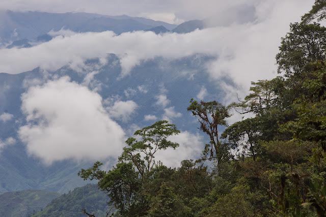 Piste de Gualchan à Chical, 1600 m (Carchi, Équateur), 3 décembre 2013. Photo : J.-M. Gayman