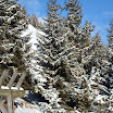 Vacanze Invernali 2013 - Image00011.jpg