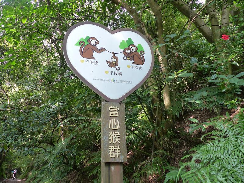 Taipei. Petite promenade au départ de Tianmu - rando%2B031.JPG