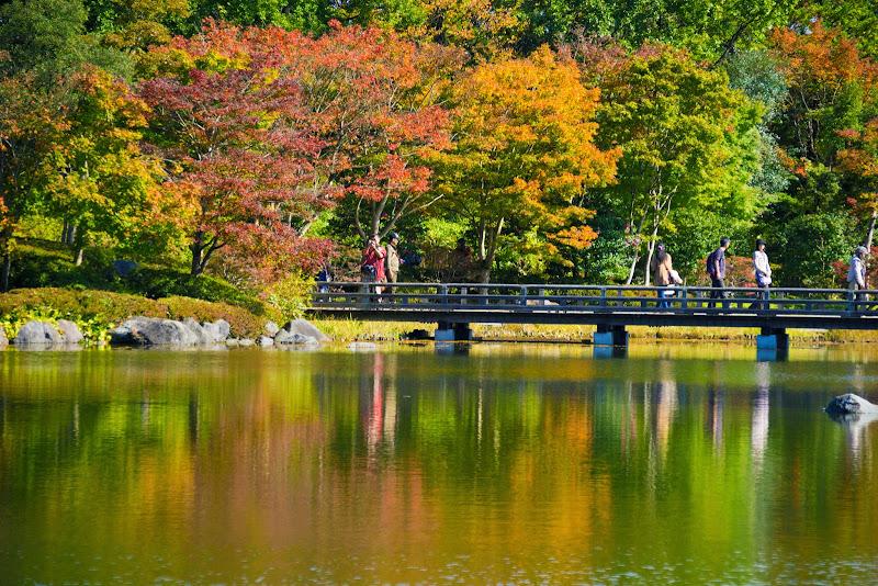 昭和記念公園 日本庭園 紅葉 写真5