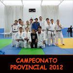 CAMPEONATO PROVINCIAL 2012