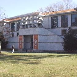 Michael C. Carlos Museum's profile photo
