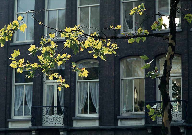 Amsterdam - 5