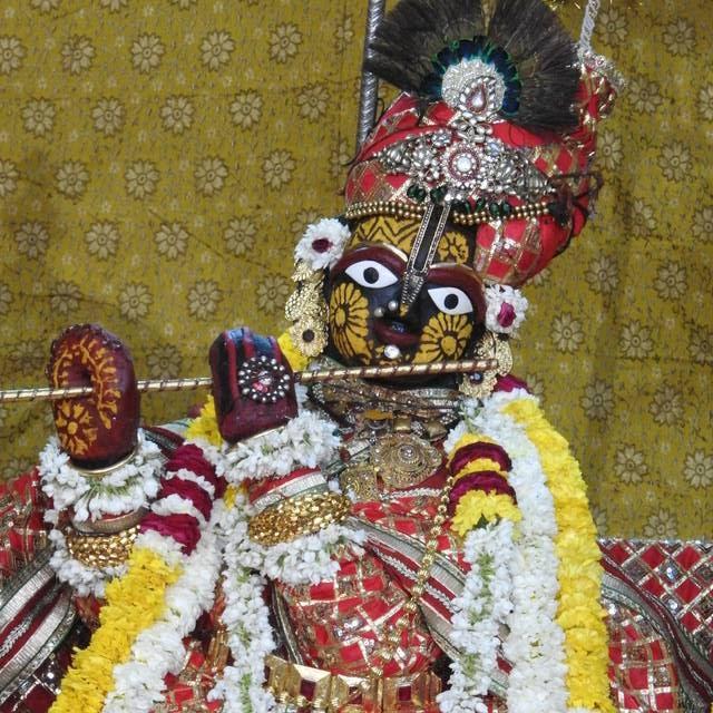 Radha Govind Devji Deity Darshan 01 Mar 2016 (5)