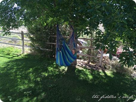 11 - Rosemary in the hammock