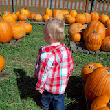 Pumpkin Patch - 114_6569.JPG