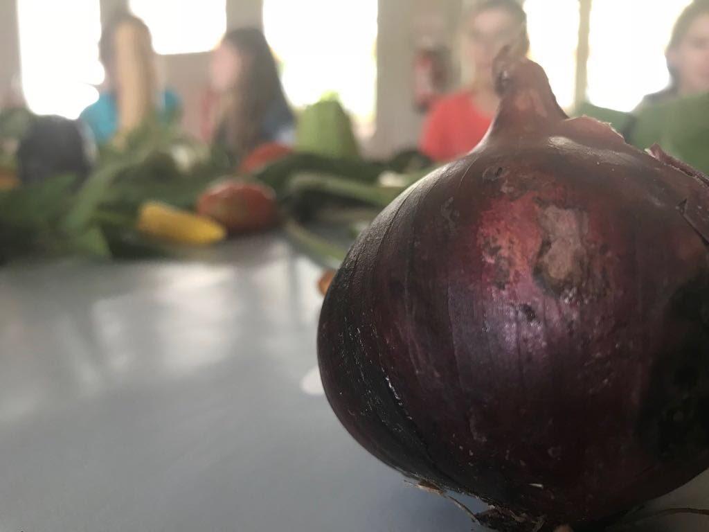Vergeten groenten - IMG_8741.JPG