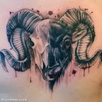 Bighorn Ram Sheep Skull - tattoo designs